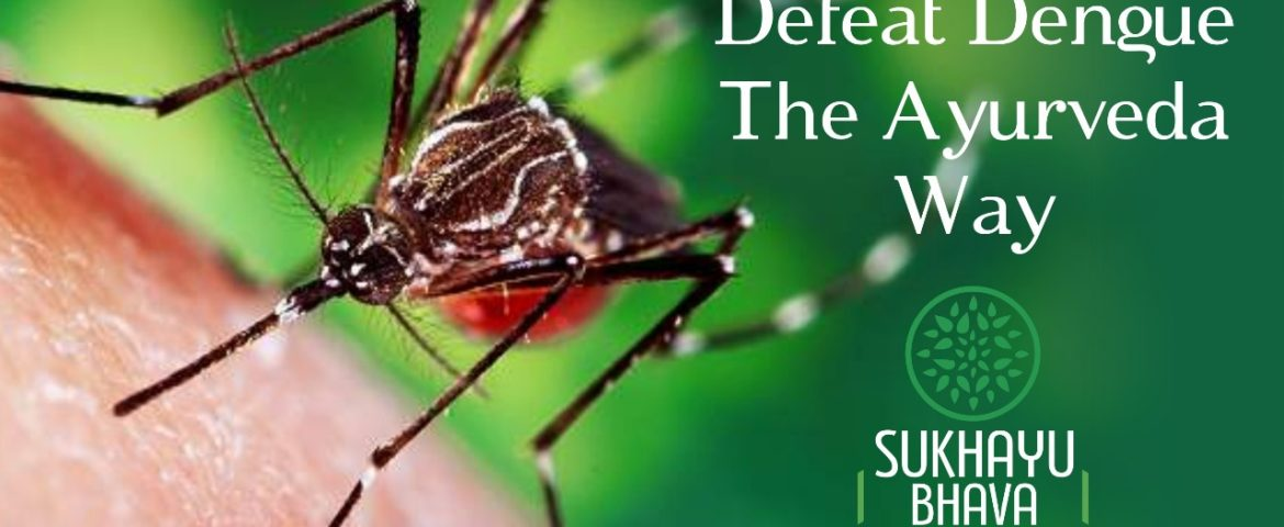 Defeat  Dengue: The Ayurveda Way